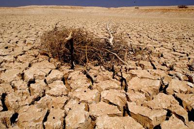 Somalia desert